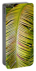 Portable Battery Charger featuring the photograph Ferns by Kate Brown