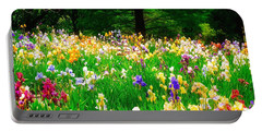 Field Of Iris Portable Battery Charger