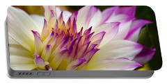 Portable Battery Charger featuring the photograph Fire And Ice - Dahlia by Jordan Blackstone