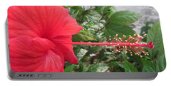 Fire And Ice Hibiscus Portable Battery Charger
