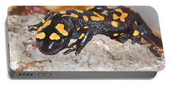 Fire Salamander Salamandra Salamandra Portable Battery Charger