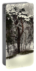 First Snow Portable Battery Charger by Henryk Gorecki