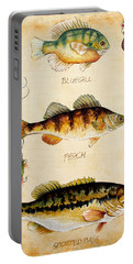 Fish Trio-c Portable Battery Charger