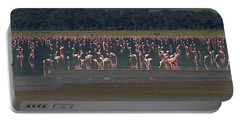 Portable Battery Charger featuring the photograph Flamingos  - 16x66 by J L Woody Wooden