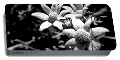 Portable Battery Charger featuring the photograph Flannel Flower by Miroslava Jurcik