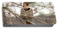 Flicker - Alabama State Bird - Attention Portable Battery Charger by Travis Truelove