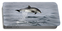 Flight Of The Dolphin Portable Battery Charger