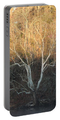 Portable Battery Charger featuring the photograph Flint River 12 by Kim Pate
