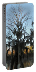Portable Battery Charger featuring the photograph Flint River 13 by Kim Pate