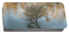 Portable Battery Charger featuring the photograph Flint River 24 by Kim Pate