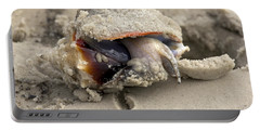 Portable Battery Charger featuring the photograph Florida Fighting Conch by Meg Rousher