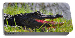 Gator Grin Portable Battery Charger by Al Powell Photography USA