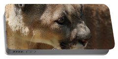 Portable Battery Charger featuring the photograph Florida Panther by Meg Rousher