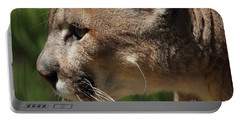 Portable Battery Charger featuring the photograph Florida Panther Profile by Meg Rousher