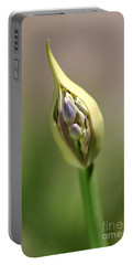 Flower-agapanthus-bud Portable Battery Charger