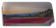 Flower Field At Sunset In A Standard Ratio Portable Battery Charger