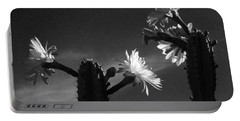 Flowering Cactus 4 Bw Portable Battery Charger by Mariusz Kula