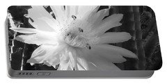 Flowering Cactus 5 Bw Portable Battery Charger by Mariusz Kula