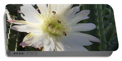 Flowering Cactus 5 Portable Battery Charger by Mariusz Kula