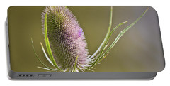 Flowering Teasel. Portable Battery Charger