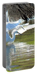 Portable Battery Charger featuring the photograph Flurry by Deb Halloran