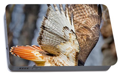 Fly Away Portable Battery Charger by Bill Wakeley