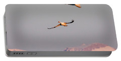 Portable Battery Charger featuring the photograph Flying High by Jack Bell