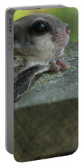 Flying Squirrel Portable Battery Charger