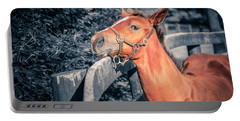 Foal By The Fence Portable Battery Charger