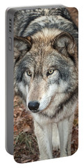Portable Battery Charger featuring the photograph Focused by Gary Slawsky