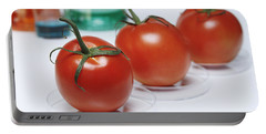 Food Research Portable Battery Charger