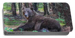 Portable Battery Charger featuring the photograph Forest Bear by Chris Scroggins