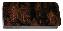 Forest Sunset, Russia Portable Battery Charger