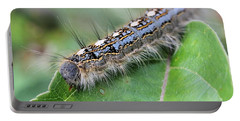 Forest Tent Caterpillar Portable Battery Charger