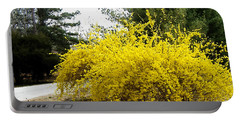 Forsythia Portable Battery Charger