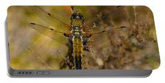 Four-spotted Chaser Portable Battery Charger