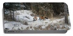 Fox Hollow Portable Battery Charger