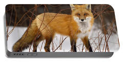 Fox In Winter Portable Battery Charger