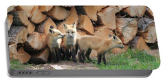 Fox Kits Portable Battery Charger