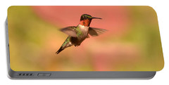 Free As A Bird Portable Battery Charger