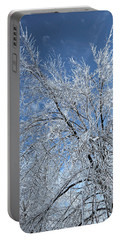 Portable Battery Charger featuring the photograph Freezing Rain ... by Juergen Weiss