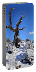 Fresh Blanket Of Snow Portable Battery Charger