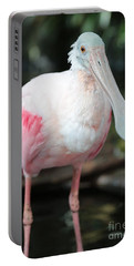 Friendly Spoonbill Portable Battery Charger by Carol Groenen