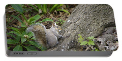 Portable Battery Charger featuring the photograph Friendly Squirrel by Marilyn Wilson