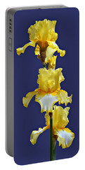 Fringe Of Gold Portable Battery Charger