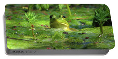 Frog Portable Battery Charger by Douglas Stucky