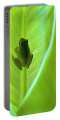Portable Battery Charger featuring the photograph Frog In Blankie by Faith Williams