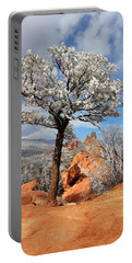Frosted Wonderland 3 Portable Battery Charger