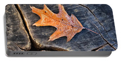 Portable Battery Charger featuring the photograph Frosty Leaf On Tree Trunk by Gary Slawsky