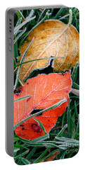 Frosty Leaves Portable Battery Charger